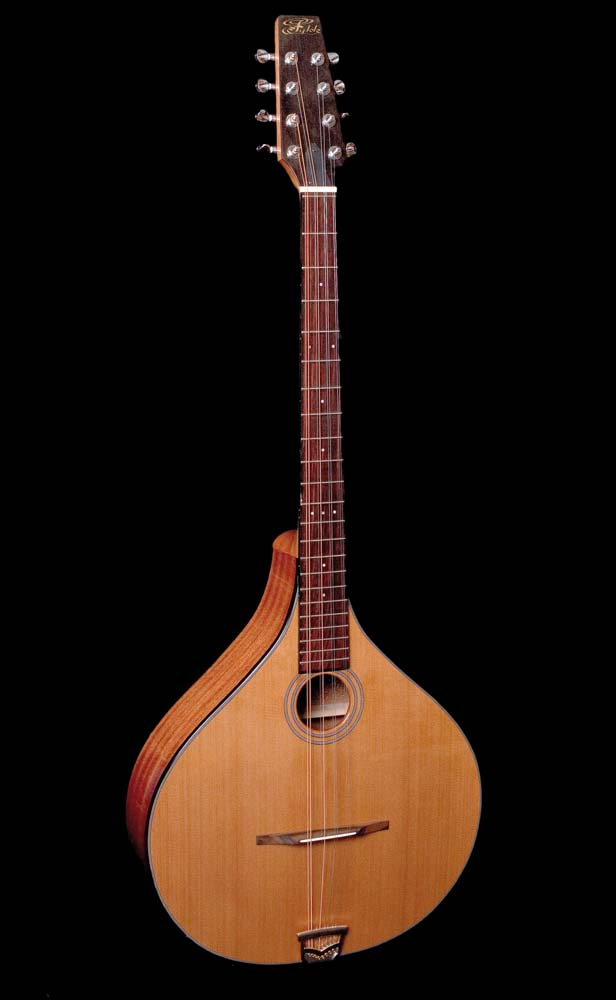Long Scale Archtop Bouzouki1